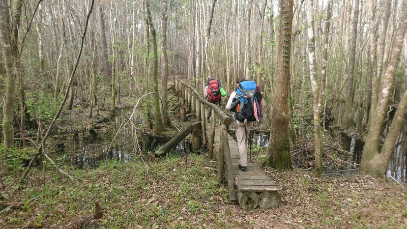 Sometimes there are very good structures to cross the swamps. Sometimes. :-)