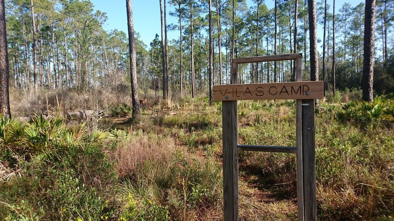 Several primitive camps well indicated along the trail. They feature a clearing for the tent, a fire ring and a bench. Well done!