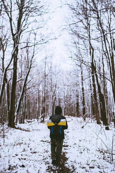 Snow covered trails  -  Chestnut Ridge Heritage Preserve