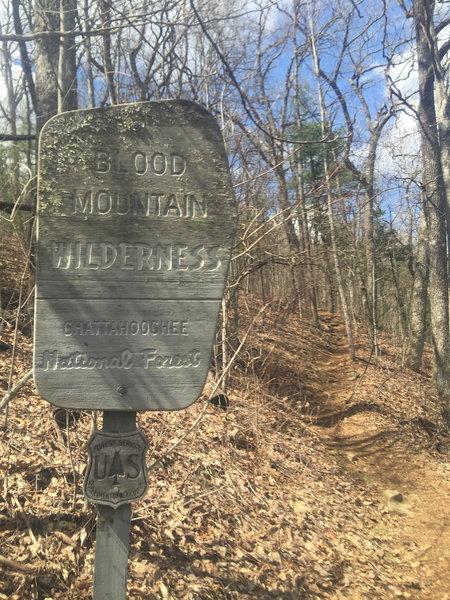 Blood Mountain Wilderness  -  Georgia AT