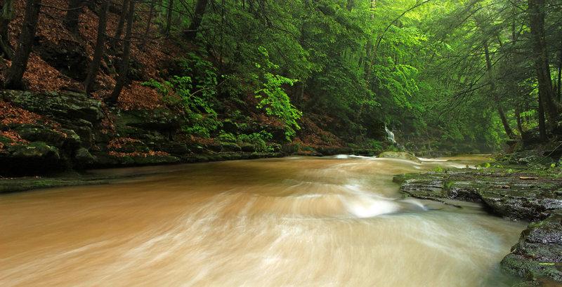 Upper Rock Run Gorge