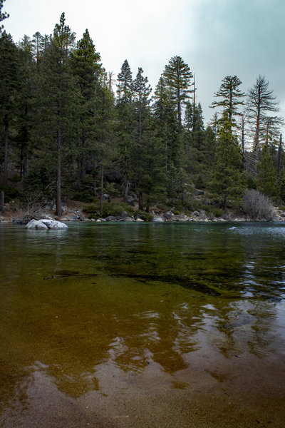 Rainbow-hued waters of Lake Tahoe, looking north, from a secluded cove on the Rubicon Trail. View just outside of Emerald Bay.