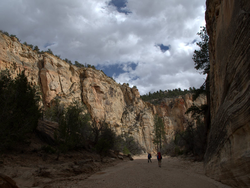 Descending Sheep Creek