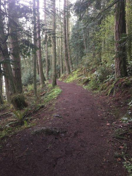 The Goose Rock Perimeter Trail.