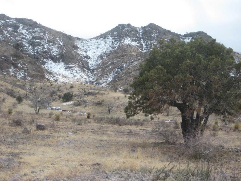 Winter view of the Organ Mountains from the trail