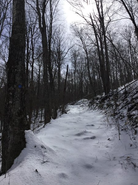 steep trail to summit