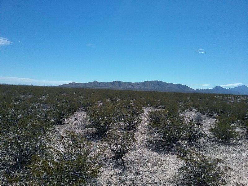 Looking south near Vado