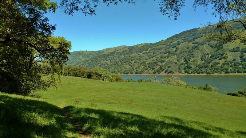 Ohlone Trail heads down to Coyote Lake.