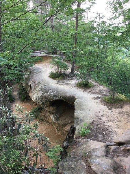 Top of Princess Arch
