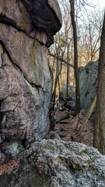 An interesting choice of paths made by the trailblazers, this is near the Lemon Squeeze in Harriman State Park