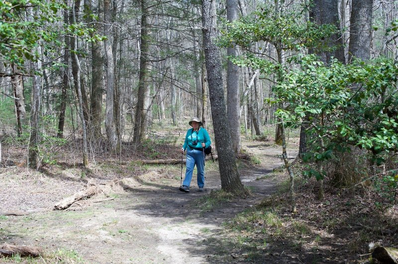 Mom hiking along the trail