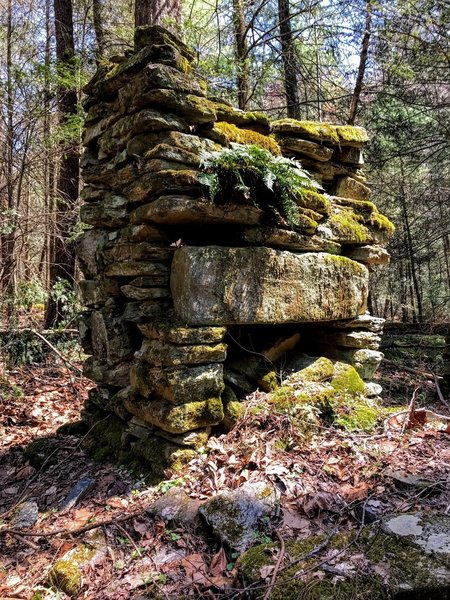 The only remnant of an old homestead