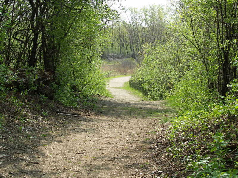 Hollows Conservation Area - Photo courtesy of McHenry County Conservation District