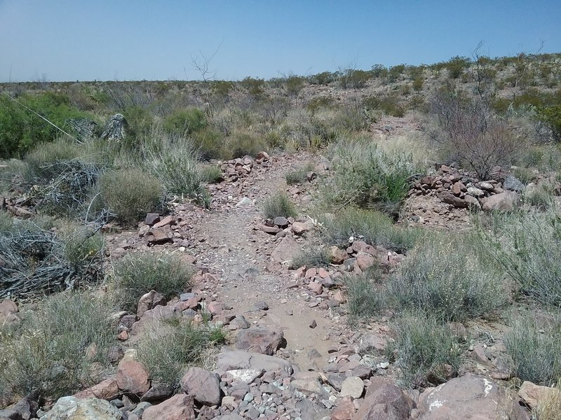 View of trail, looking north