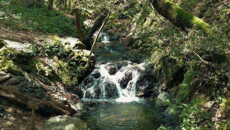 Granuja Falls along Swanson Creek.
