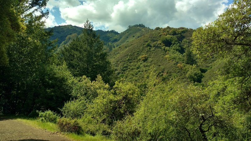 Nearby Santa Cruz Mountains to the northwest, seen from Alec Canyon Trail as it climbs steep switchbacks at the beginning.