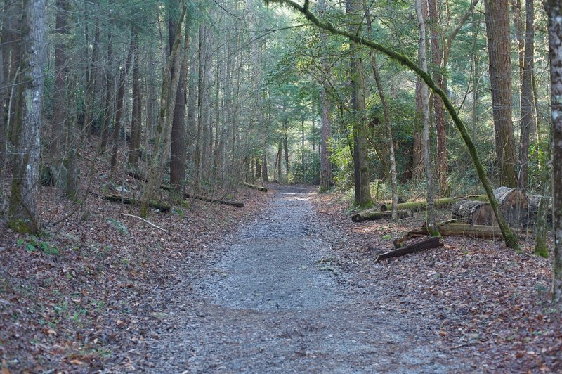 As the trail leaves the campground, the trail is gravel and wide.