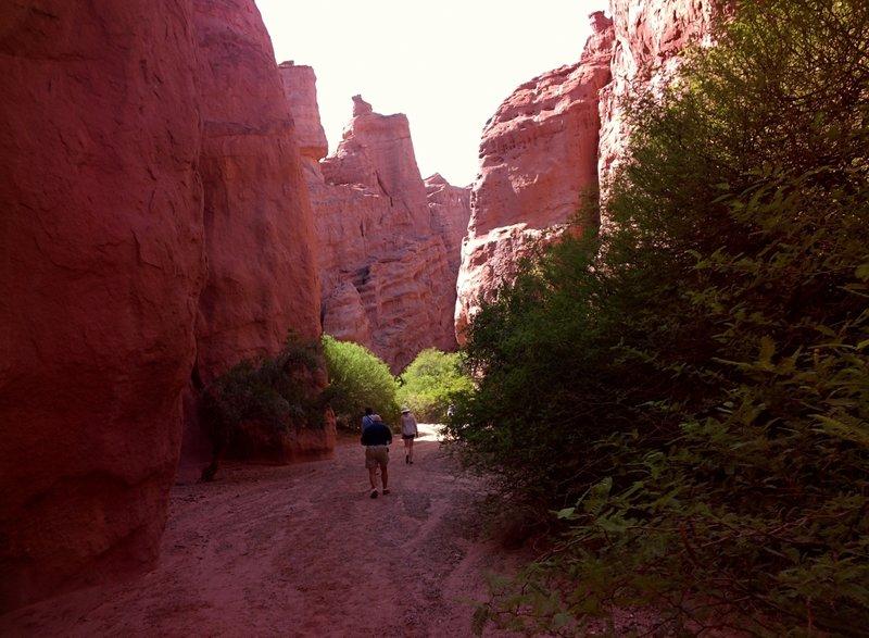Varied group walking / hiking up.