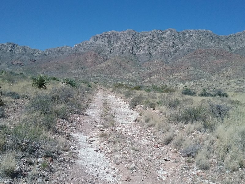 Looking west from the trail towards the Franklin Mountains