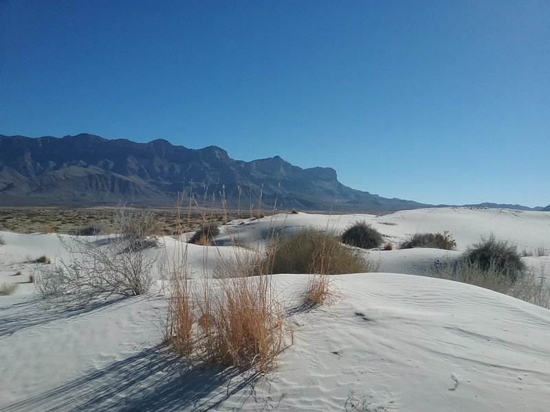 View of the Dunes and Guadalupe Mountains