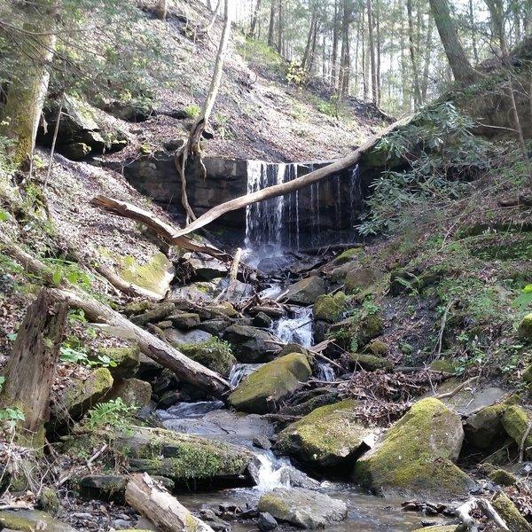 Many little waterfalls along the trail