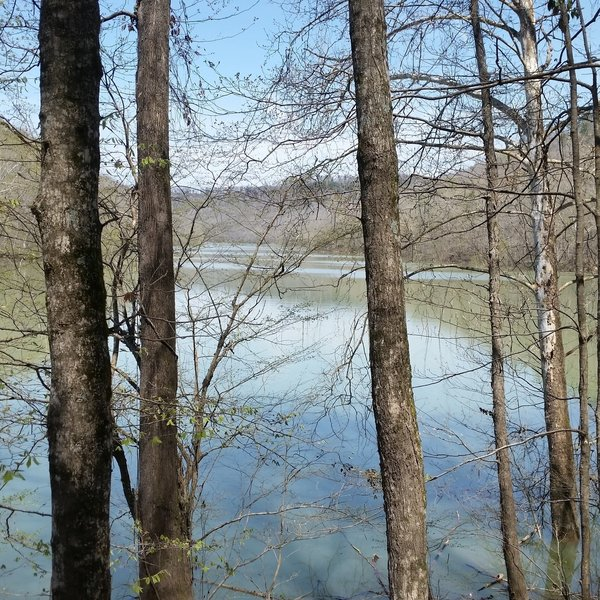 River views are plentiful along Sheltowee Trace