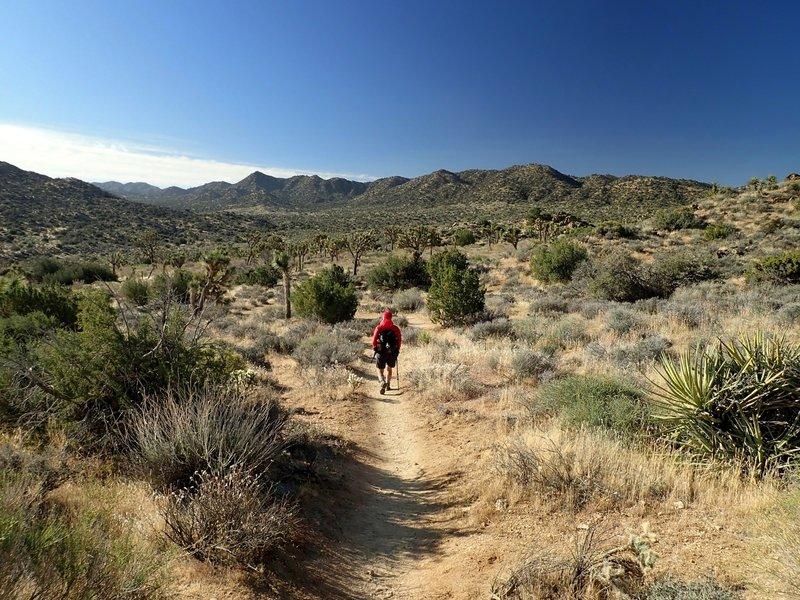 Entering Black Rock Canyon