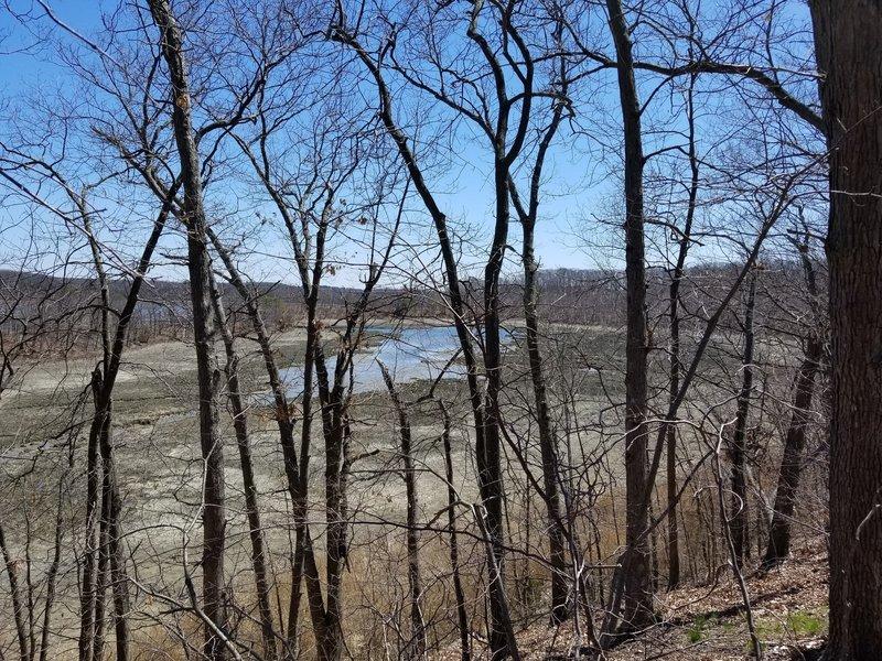 Looking down at the Reversing Falls Marsh