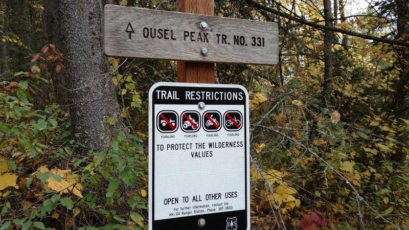 Ousel Peak TR. NO. 331