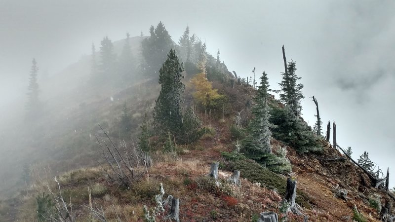 Almost to the Summit. It is now snowing pretty hard and cant see what is over the edge