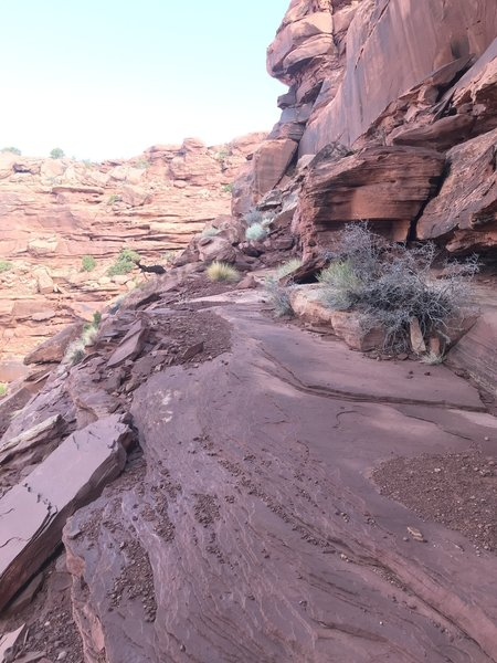 Exposed cliff trail, wider than an average sidewalk