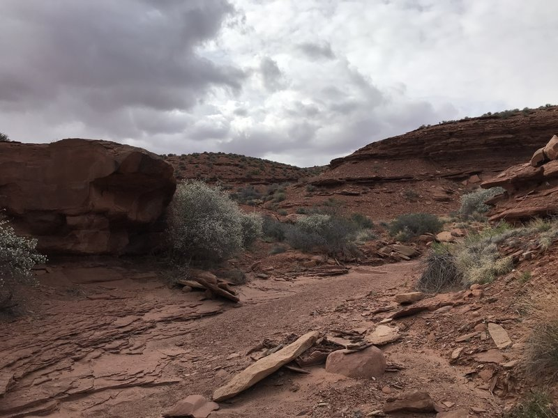 Hiking in the wash, before some rain falls