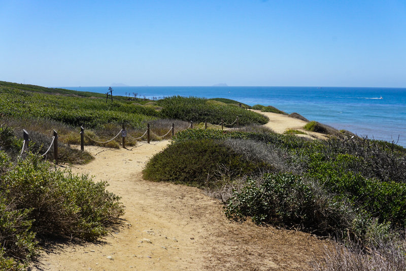 The trail meanders along the cliffs of Point Loma.