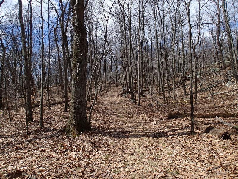 Steffen Trail