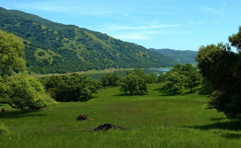 Coyote Lake can be seen across a meadow along Calaveras Trail.