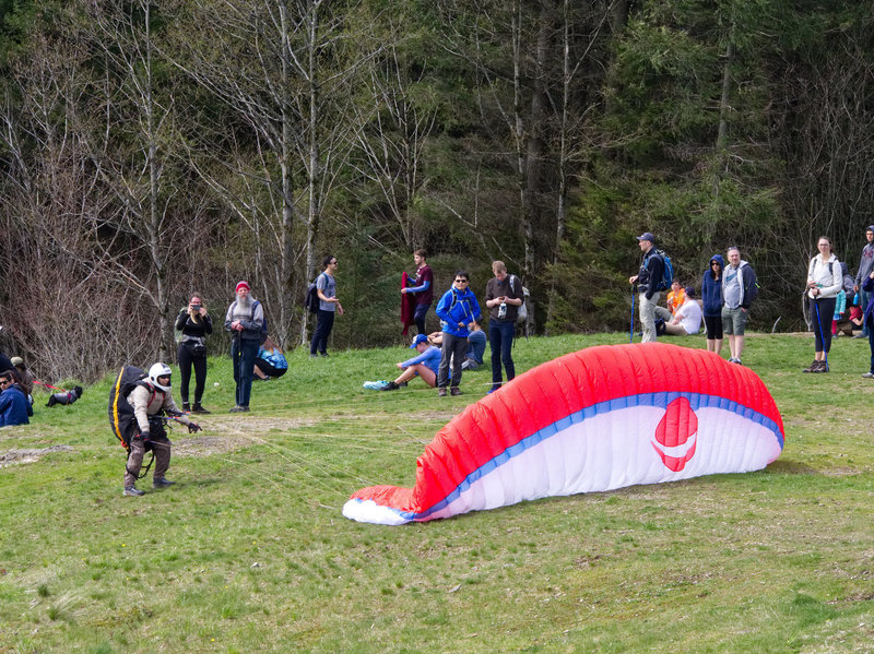 A Para Glider Stares Down his Parachute