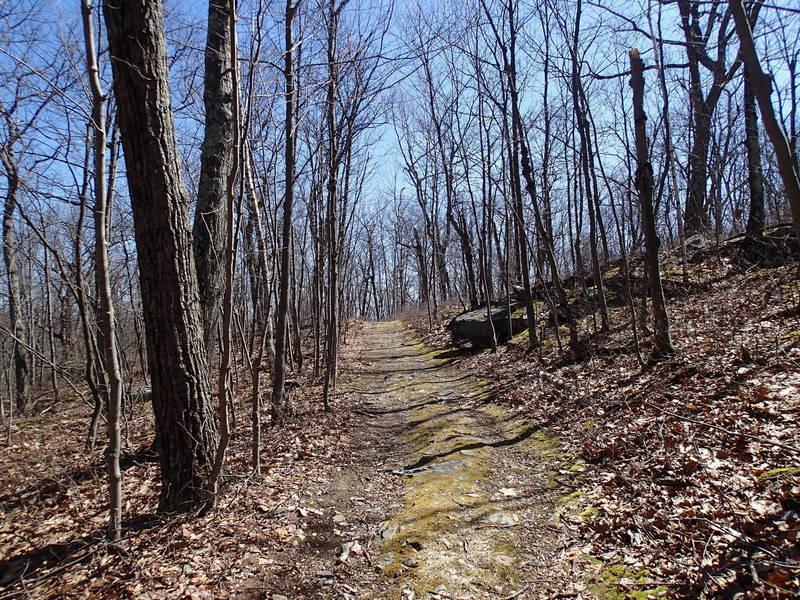 Iris Trail