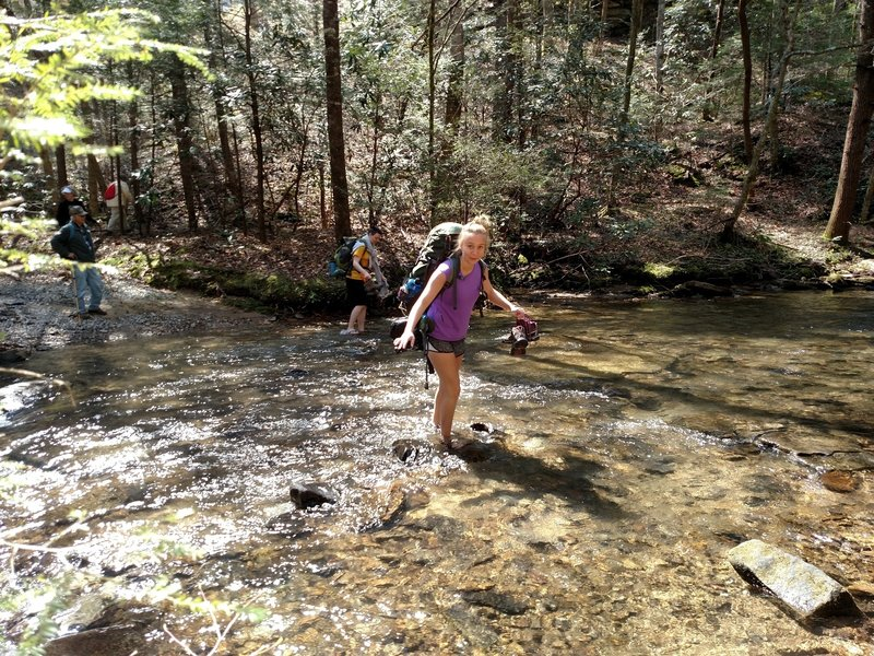 Girl Scout Troop 20793 crossing the stream on Longfield Branch Trail