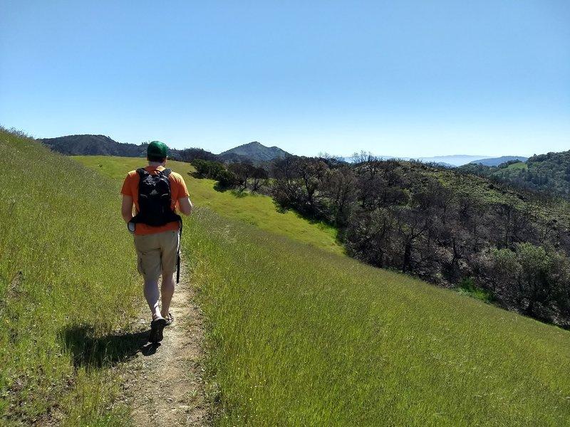 Well-cut track on Vista Trail