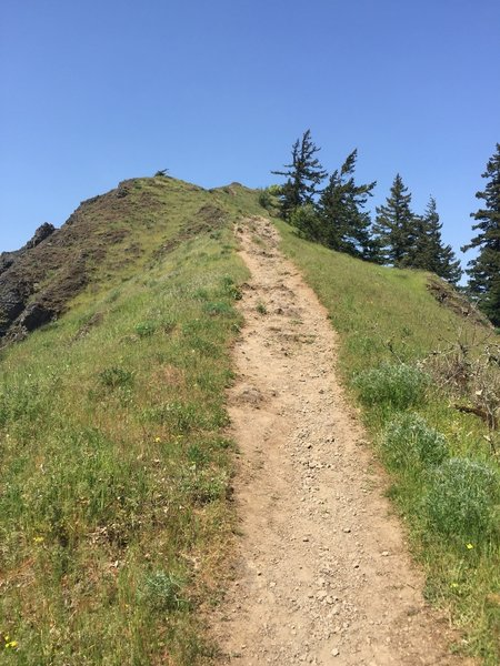 Approaching the Mitchell Point summit