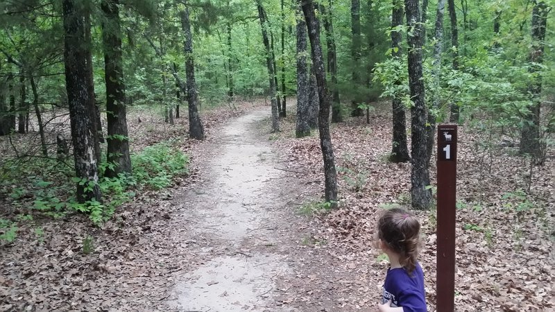 A great trail to enjoy with your little ones.