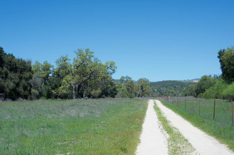 The Bacon Ranch Road is the trail for this hike. It's an old road that was used by the Bacons on their farm.