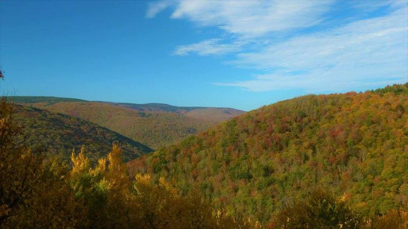 Fall colors view from south side of Breathed Mountain