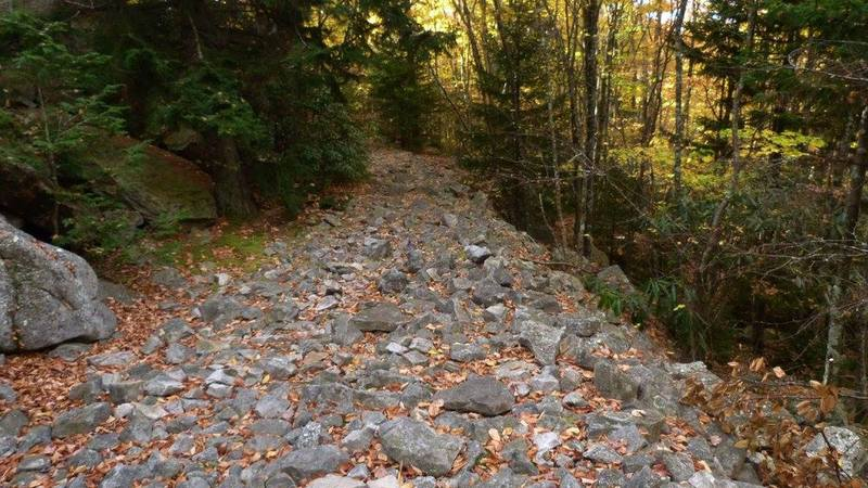 Most of of the Rocky Point Trail looks like this