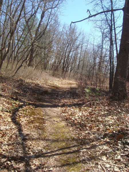 Trail headed to Crooked Lake to view wetland dependent wildlife.