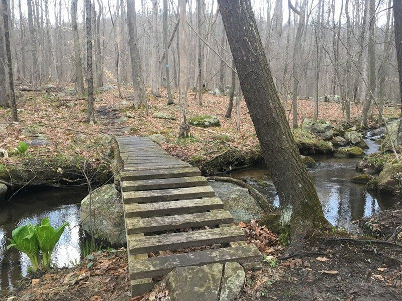 Scenic wide stream crossing