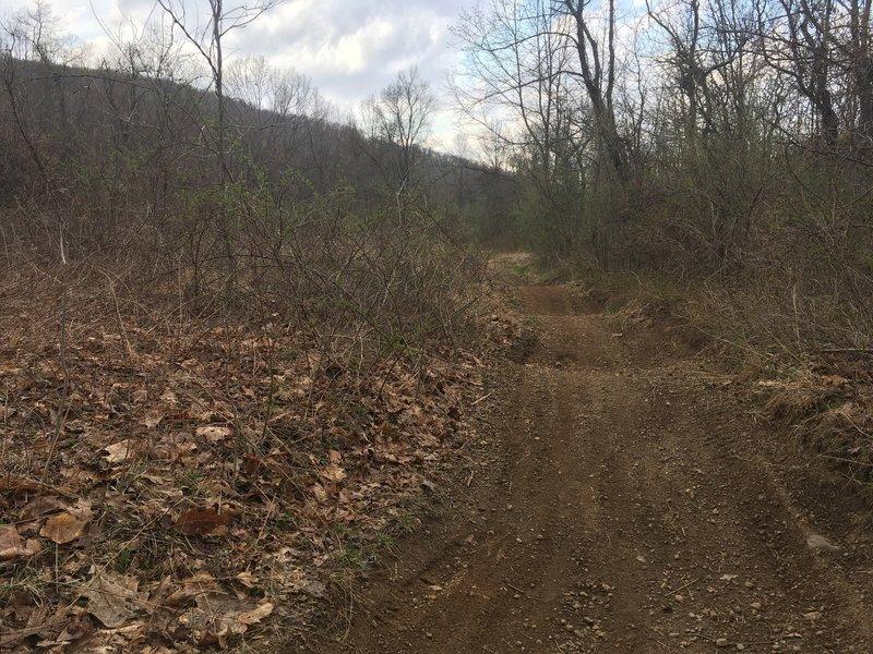 Undulating dirt track