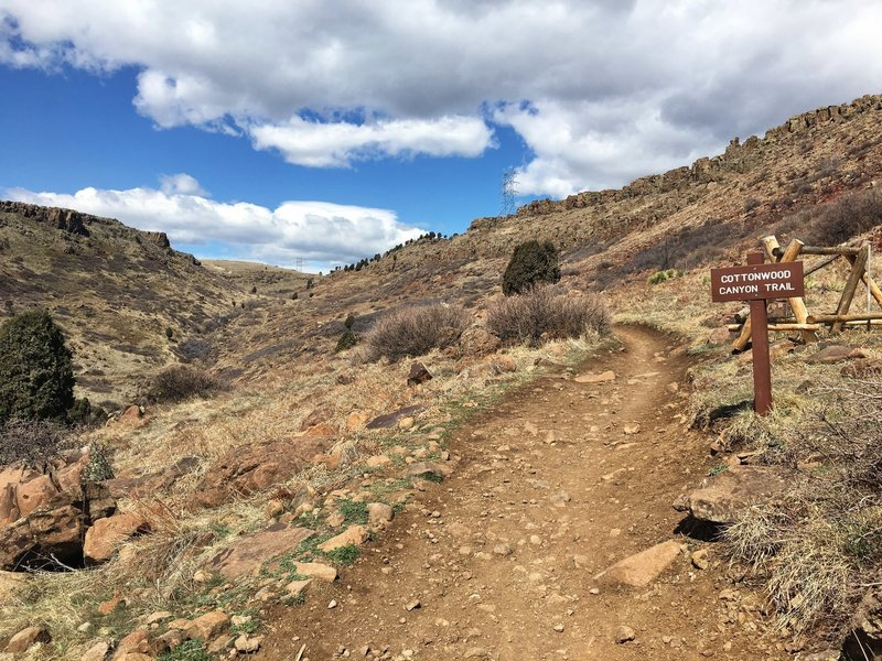North Table Loop and Cottonwood Canyon Trails split