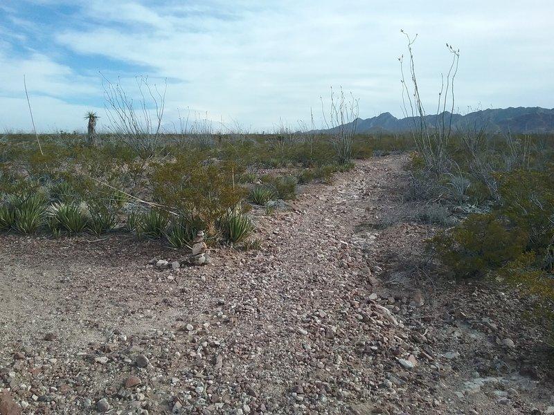 Beginning of trail