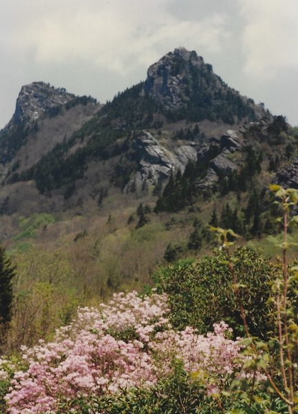 The Mountain in the spring
